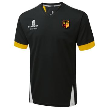 Bild von Alvechurch Training T-Shirt