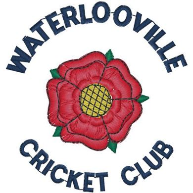 Picture for category Waterlooville CC