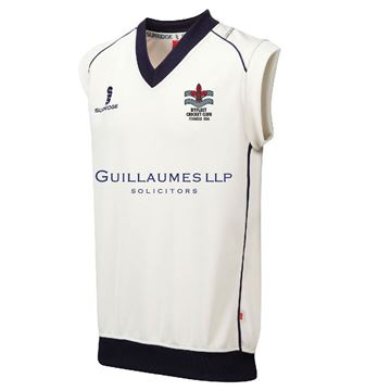 Picture of Byfleet CC Colts Curve Sleeveless Sweater