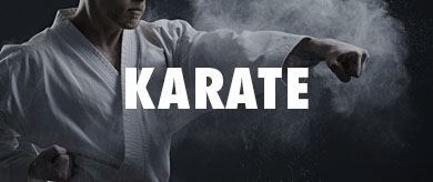 Picture for category BU Karate