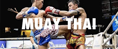 Picture for category QMU Muay Thai