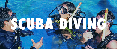 Picture for category Scuba Diving