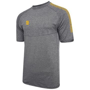 Picture of Dual Gym T-Shirt- Grey Melange/Amber