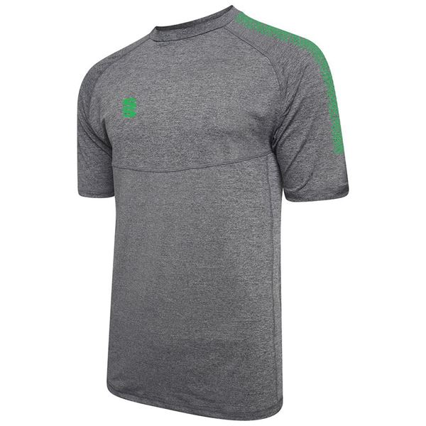 Picture of Dual Gym T-Shirt- Grey Melange/Emerald