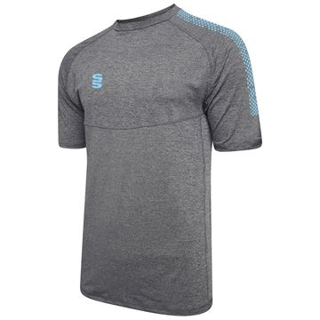 Picture of Dual Gym T-Shirt- Grey Melange/Sky