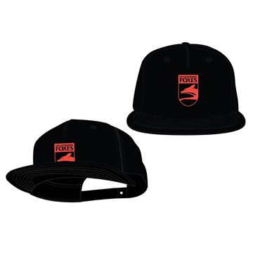 Picture of Leicestershire CCC Retail ODC Snapback