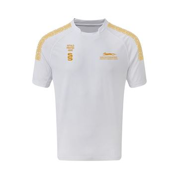 Picture of Leicestershire CCC Retail  Men's Dual Games Shirt