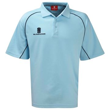 Picture of ALPHA POLO - SKY/NAVY