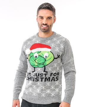 Bild von Adults Sprouts Not Just For Christmas Jumper
